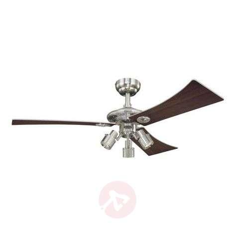Audubon ceiling fan with three blades