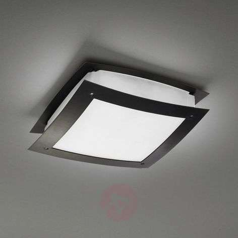 Beautiful outdoor ceiling light Darwin