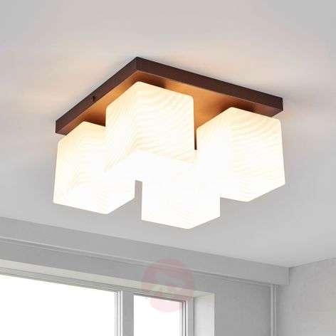 Beautifully shaped Vega ceiling light