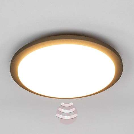 Benton LED outdoor ceiling light with sensor-9619047-313