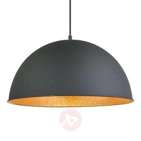 Black and golden Lenn pendant light