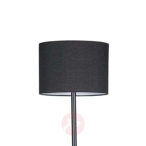 Black Imposing Floor Lamp