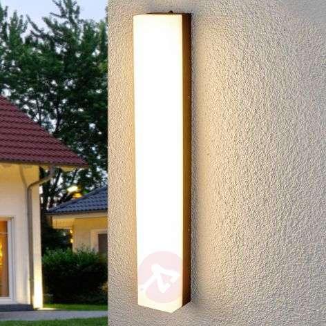 Bright LED outdoor wall lamp Cahita