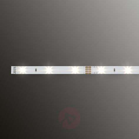CAJA - LED ECO strip length 50 cm, warm white
