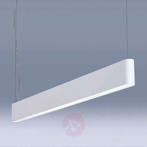 Caleo-P4 white LED hanging light