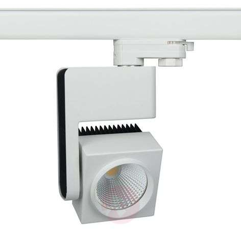 Canto LED spot for 3-circuit tracks, warm white