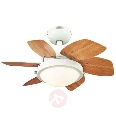 Ceiling fan Quince with light, white-beech