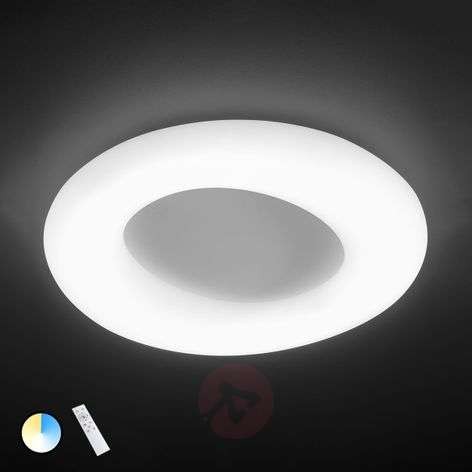 County adjustable LED ceiling light with remote