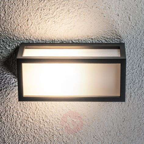 Decorative energy-saving outdoor wall light Tame