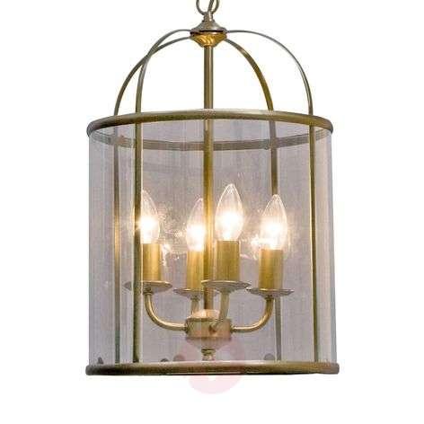 Decorative Pimpernel hanging light