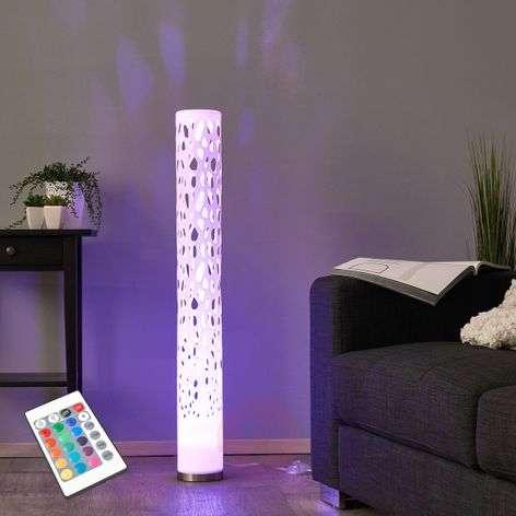 Decorative RGB LED floor lamp Alisea
