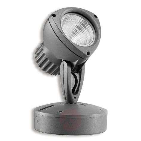 Dedalo LED spotlight 20° rotation