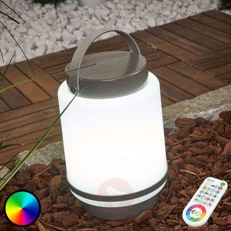 Doji LED decorative light iDual, battery & remote