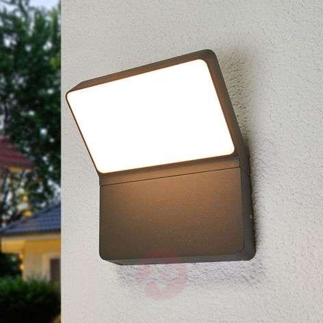 Downlighting LED outdoor wall lamp Evelin