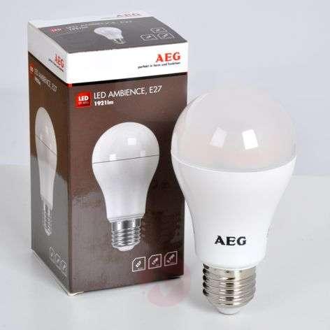 E27 17W 827 LED lamp, matt-1558005-33