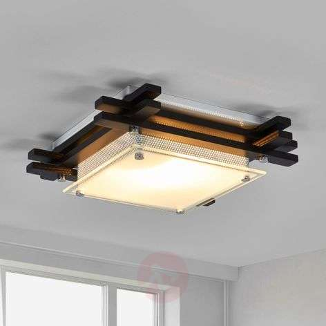 EDISON Wooden Ceiling Lamp