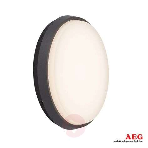 Efficient Letan Round LED outdoor wall lamp