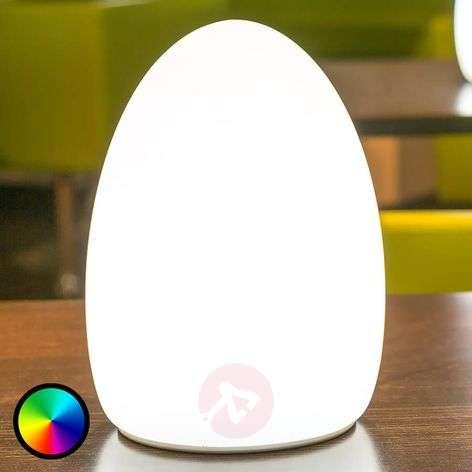 Egg decorative light, controllable via app-8590016-31