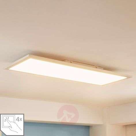 Elongated LED panel Enja, 30 x 80 cm