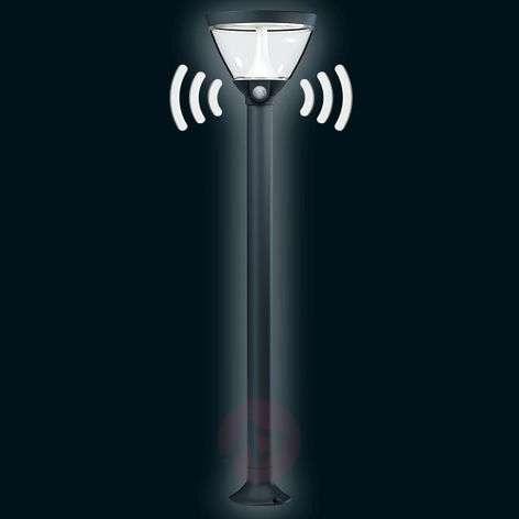Endura Style Lantern Solar - LED path light