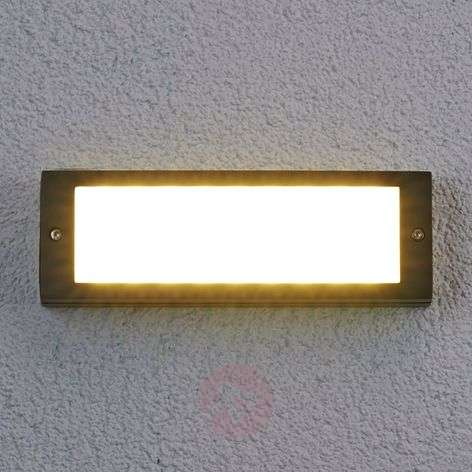 Energy saving Rachel LED outdoor wall light