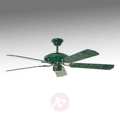 Fans lights espria ceiling fan black green marbled mozeypictures Image collections