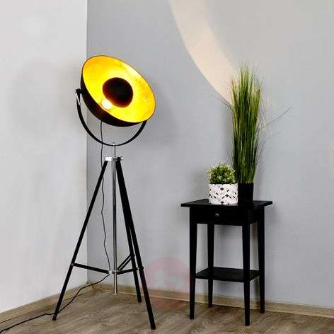 Extravagant floor lamp Mineva in black and gold
