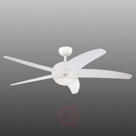 Five-blade ceiling fan Bendan with light