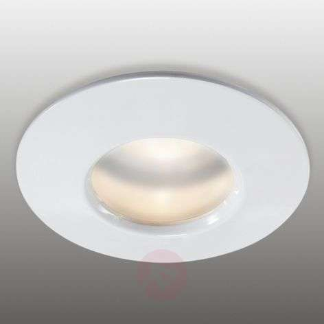 Fixed recessed light