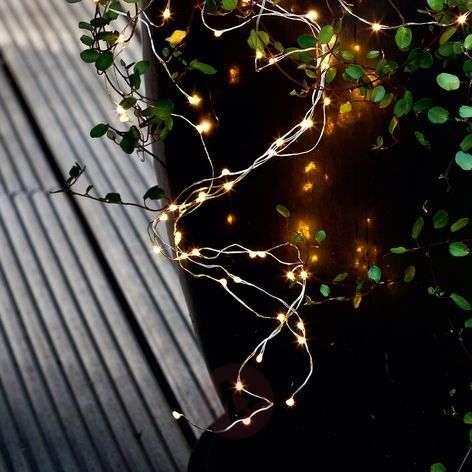 Forty-bulb LED string lights Knirke for indoors