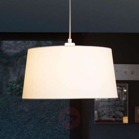 Fusta hanging light with offset suspension