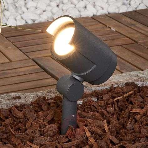Ground stake spotlight Beatrix with LEDs-9616119-31