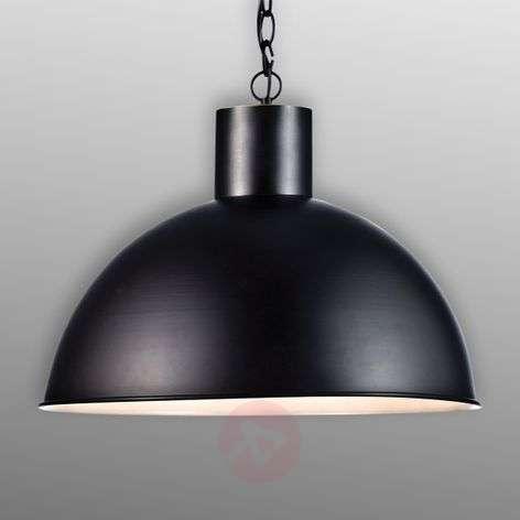 Hanging light Ekelund