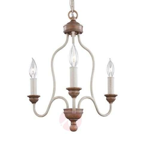 Hartsville - a chandelier in a farmhouse design
