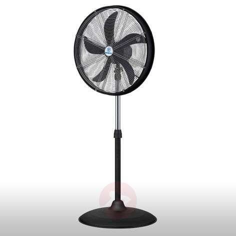 Height-adjustable pedestal fan Yukon I-9602251-31