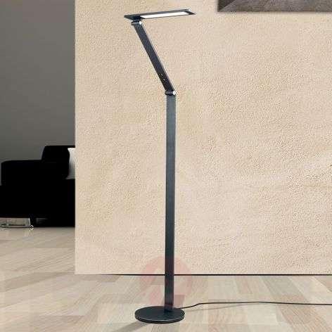 High-quality Karina LED floor lamp