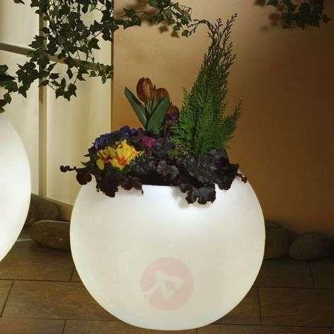 Illuminated planter, highest quality, white-3050006X-31