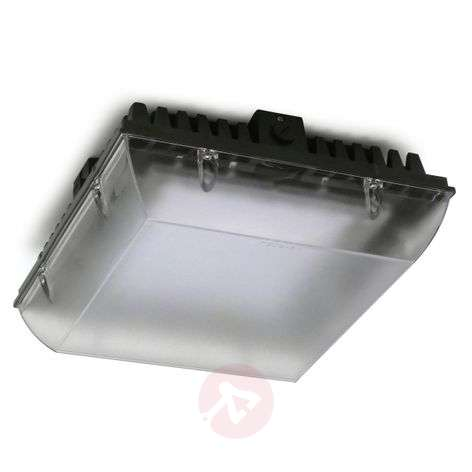Impact-resistant LED outdoor ceiling light Premium