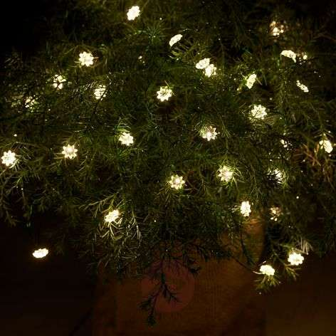 Indoor and outdoor LED string lights Silke 40-bulb