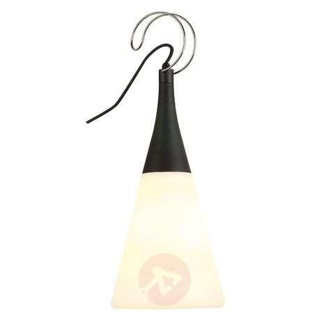 IP44 Plenum Swing Exterior Pendant Lamp-5504475-31