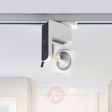 Jamie 3-circuit track system spotlight with LED-9967018-32