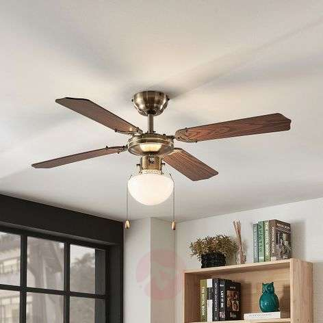 Joulin ceiling fan with light, oak