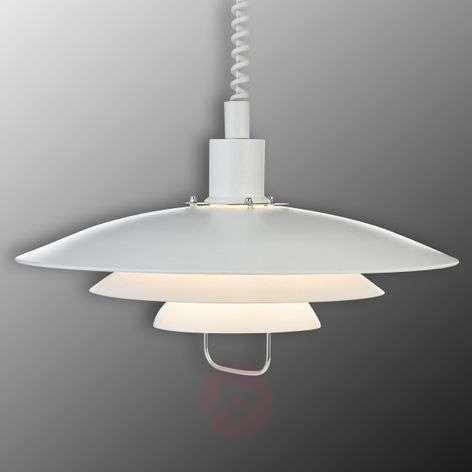 Kirkenes - adjustable hanging light