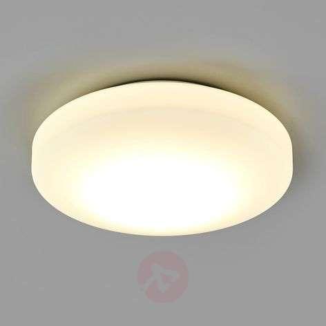 LED bath. ceiling lgt Malte made of opal LS