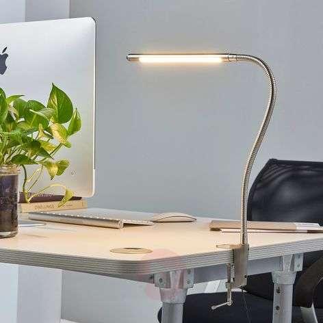 LED clip-on light Lionard
