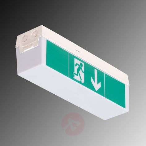 LED emergency exit light C-Lux Standard, 3 hrs