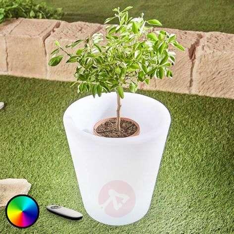 LED flowerpot light Leyra, RGB, remote control-6729016-31