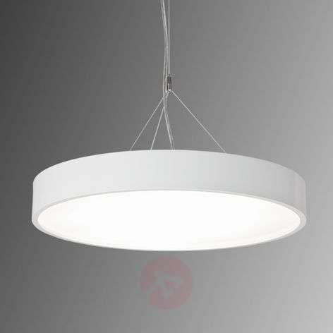 LED hanging lamp Module P645 white-6040189-31