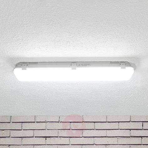 LED moisture-proof light Mareen 17W, 61cm