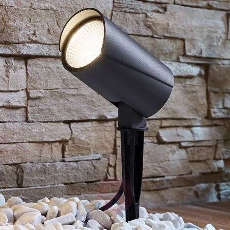 LED outdoor spotlight Anton with ground spike